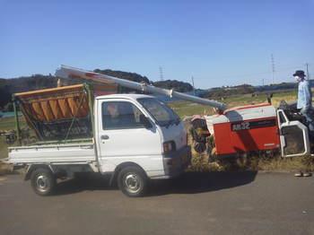 脱穀したものをまとめて別のトラックへ.JPG